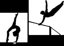 Projet d'ouverture de cours de gymnastique artistique pour adultes