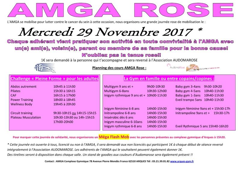 AMGA Rose le Mercredi 29 Novembre 2017 au Complexe Gymnique d'Arques