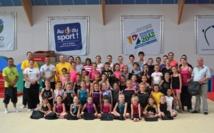 Stage départemental de Gymnastique du 5 au 7 juillet 2014