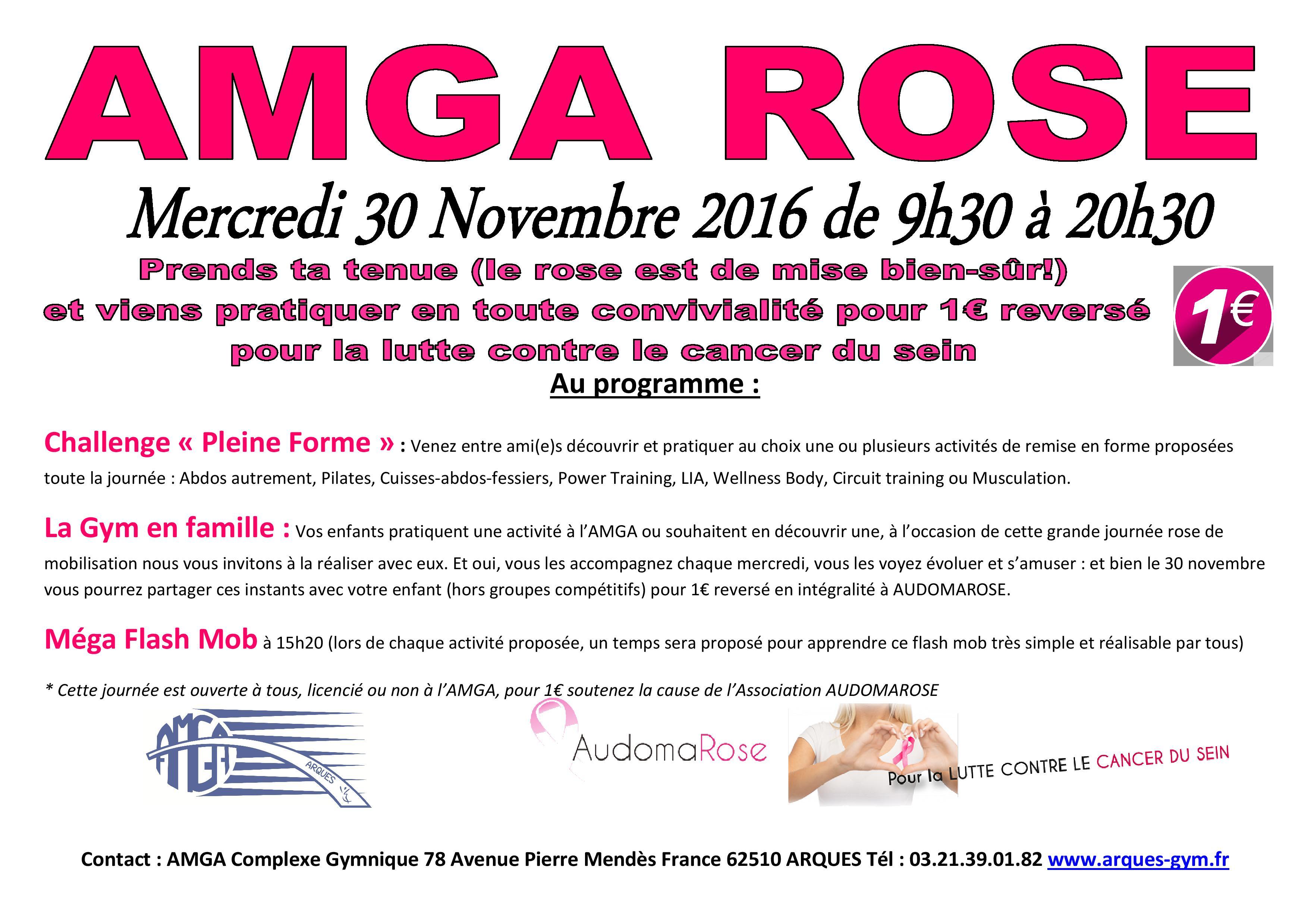 Flash-Mob pour l'AMGA Rose du Mercredi 30 Novembre 2016