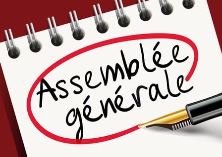Vote AMGA: Assemblée Générale Ordinaire et Elective le 16 décembre 2020 à huis clos
