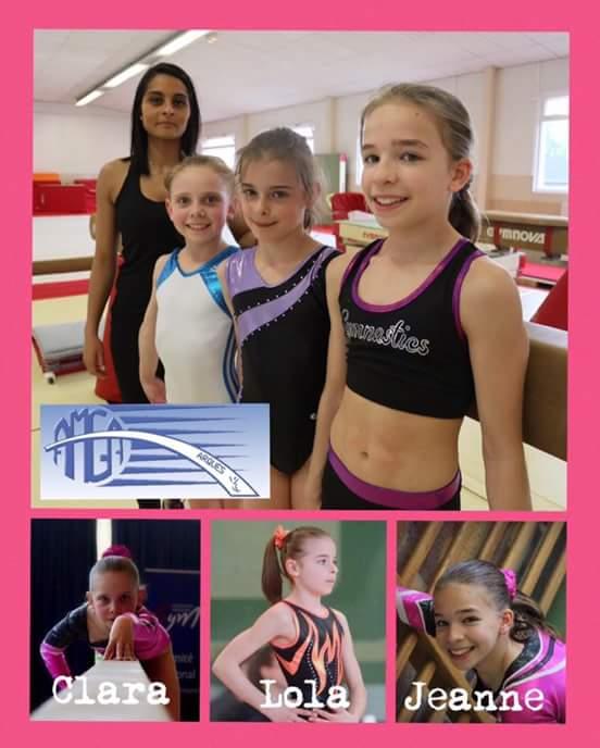 Championnats de France de gymnastique artistique masculine et féminine individuelle à Montbéliard