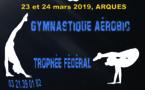 Finales Interrégionales de Gymnastique Aérobic 23 & 24 Mars 2019